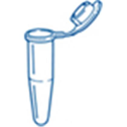 Certified 0.5ml Single StarPCR® Tube w. Attached Flat Cap