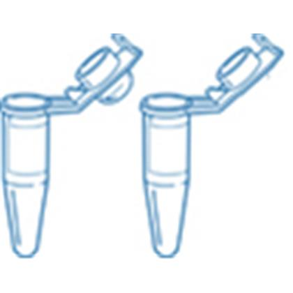 Certified 0.2ml Single StarPCR® Tube w. Attached 'Shielded' Flat Cap